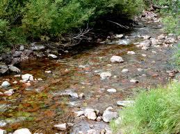 stones in a stream
