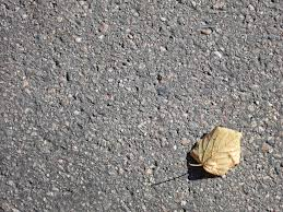 lone leaf on pavement